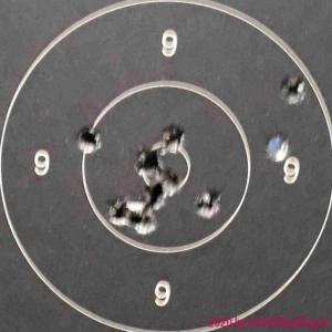 55gr FMJ GECO Target - 100m - 08x201219