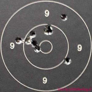55gr FMJ GGG - 100m - 08x201219