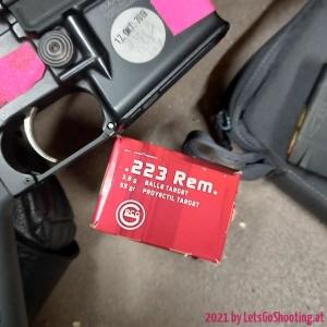 55gr FMJ GECO Target